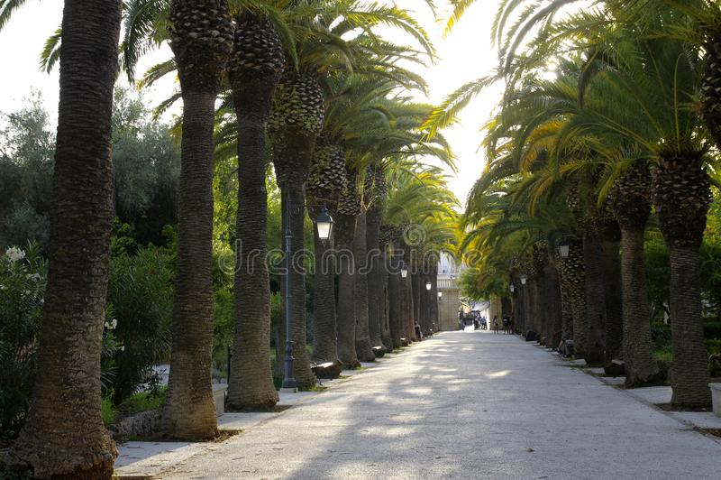 Public gardens late afternoon in Ragusa Ibla, Sicily, Italy royalty free stock images