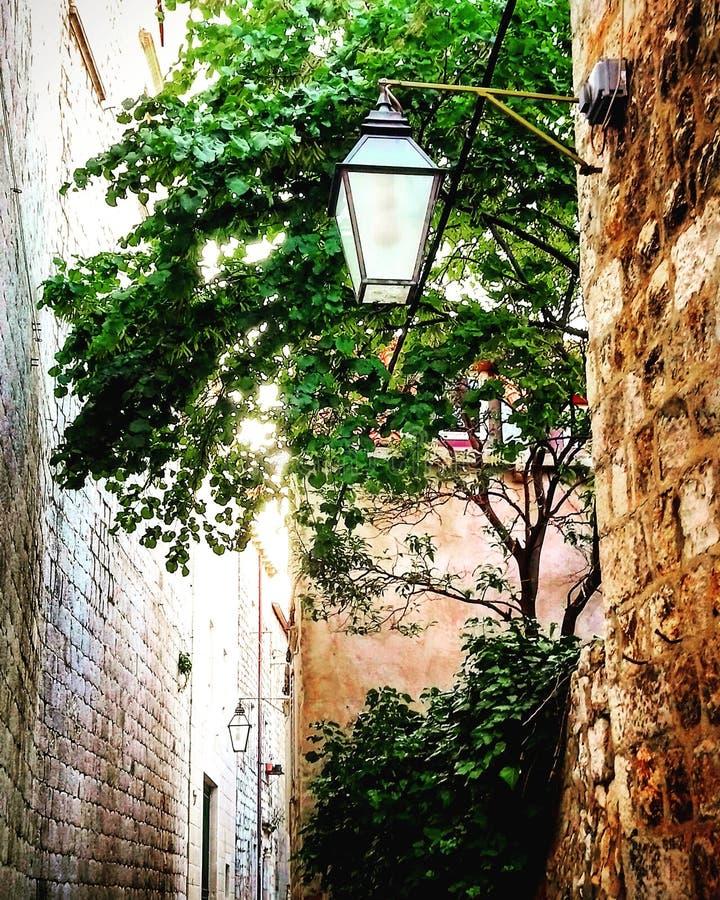 Ragusa stad royaltyfri foto