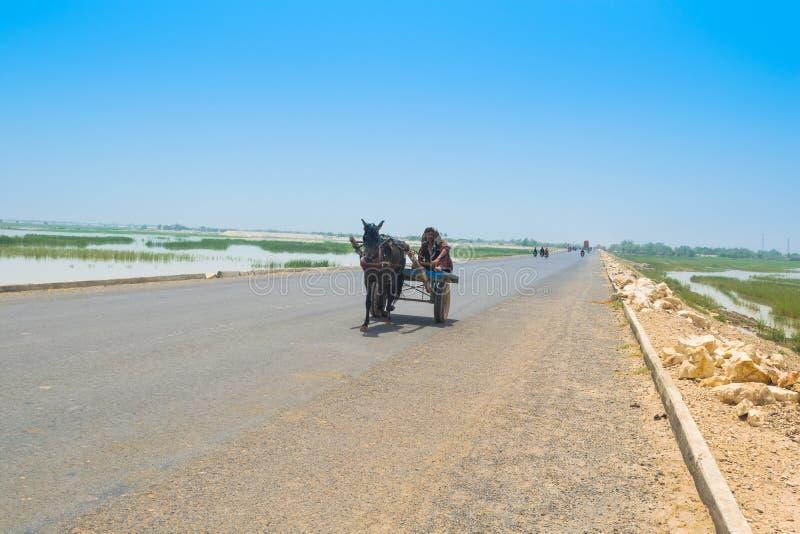Rahim yar khan, Punjab, 23,2019 Πακιστάν-Ιουνίου: μια συνεδρίαση χωρικών σε ένα κάρρο αλόγων σε έναν υψηλό τρόπο στοκ εικόνες με δικαίωμα ελεύθερης χρήσης