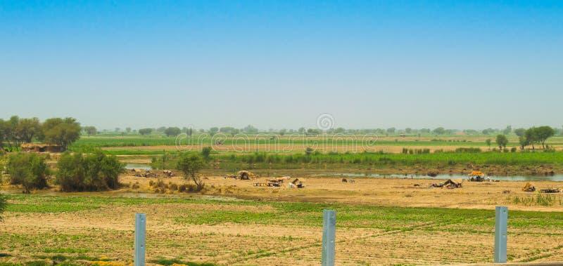 Rahim yar khan, Punjab, Pakistan-Juni 23,2019: uppehälle för hemlöst folk i flodområden royaltyfria foton
