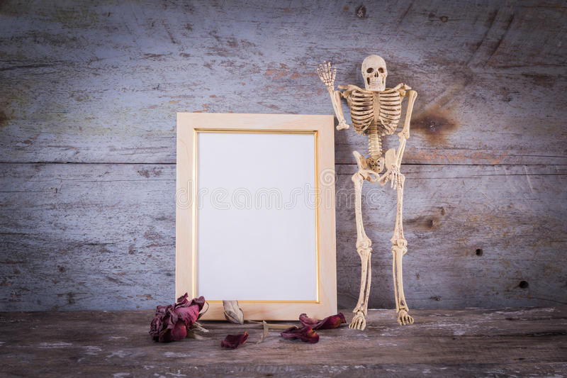 Rahmen des menschlichen Skelett- und Weinlesefotos lizenzfreie stockfotografie