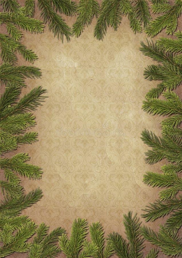 Rahmen von den Zweigen eines Weihnachtsbaums stockfotografie