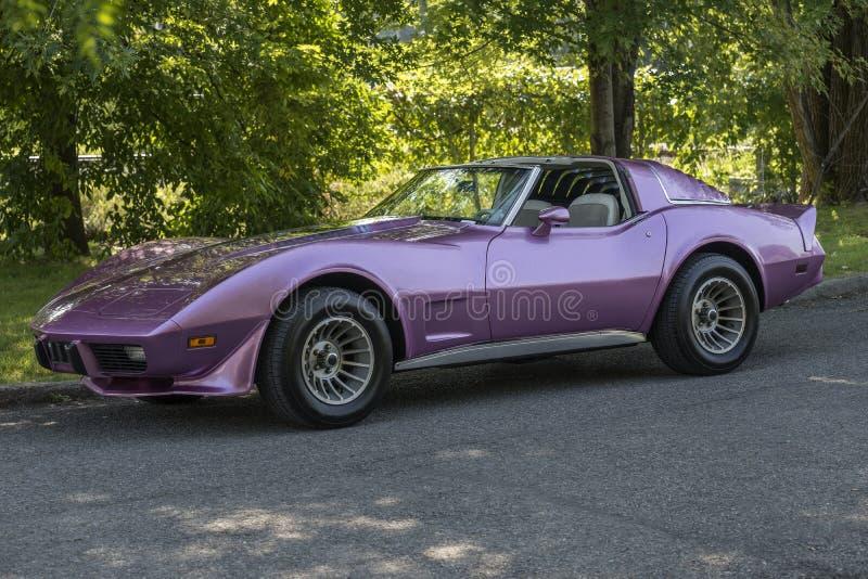 Raia de picada de Chevrolet Corvette imagens de stock royalty free