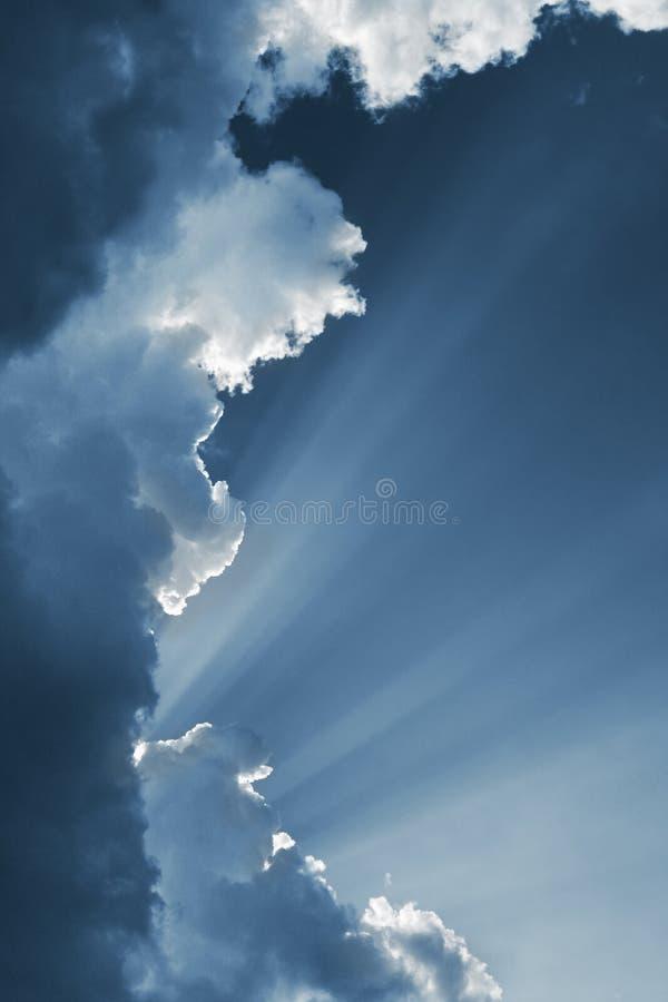 Raia de Sun foto de stock