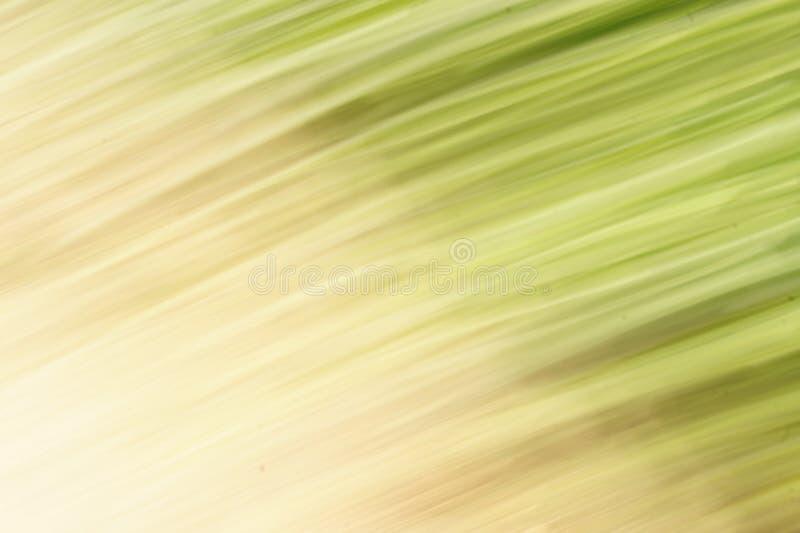 Raias abstratas no verde e no amarelo imagem de stock
