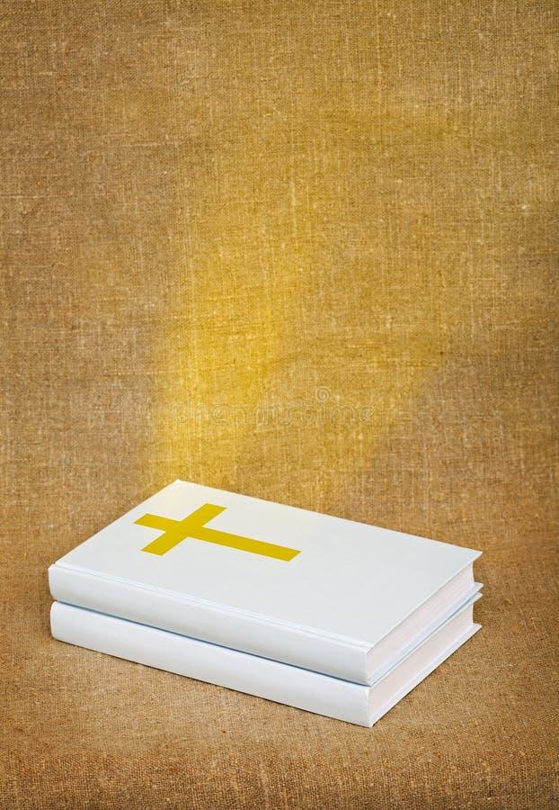 Raias da Bíblia fotografia de stock