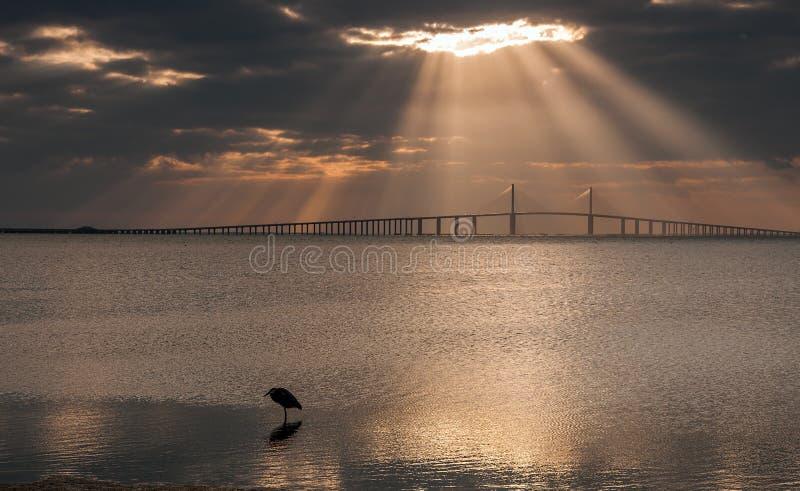 Raias de Sun que brilham na ponte de Skyway da luz do sol fotografia de stock royalty free