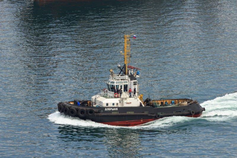 Raid tug in the water area of the port of Vladivostok in the Golden Horn Bay. Vladivostok, Russia - April, 20, 2019: Raid tug in the water area of  royalty free stock photos