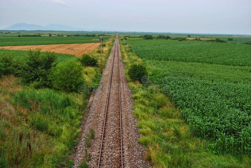 Rail in nature under bridge in Vojvodina stock image