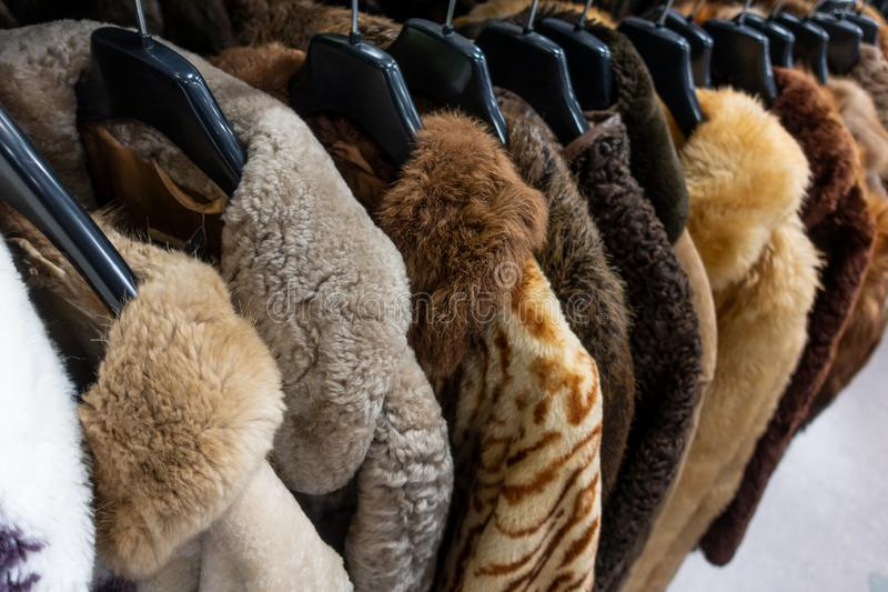 Thrift Shop Stock Images Download 896 Royalty Free Photos