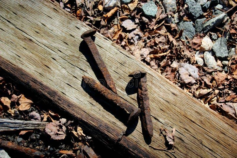 railroad ржавые спайки стоковые фотографии rf