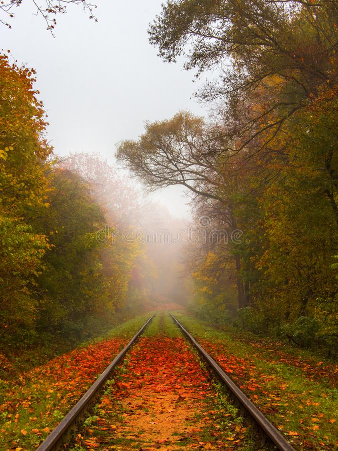 Railroad at early misty autumn morning. stock images