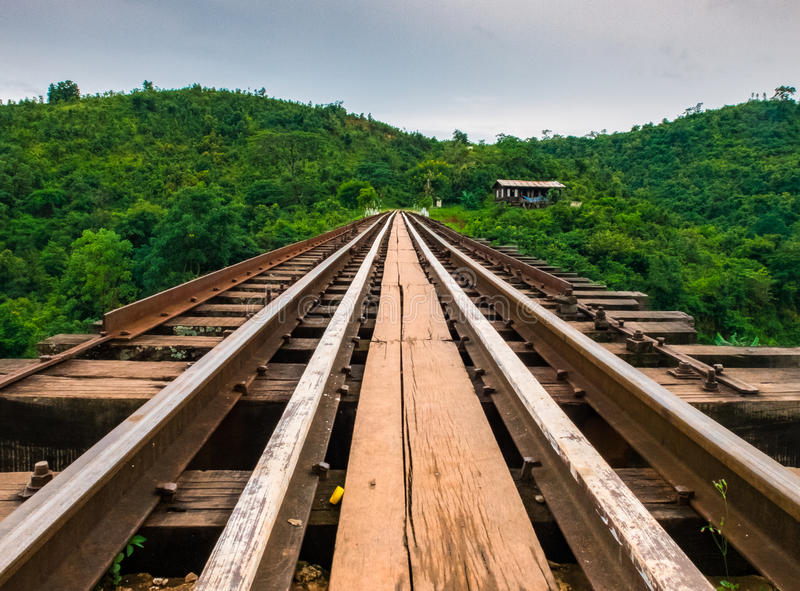 Railroad immersing into the tropical forest royalty free stock photography