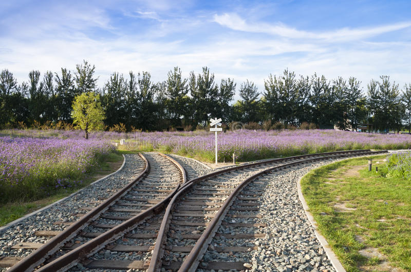 Railroad junction. To different way royalty free stock photos