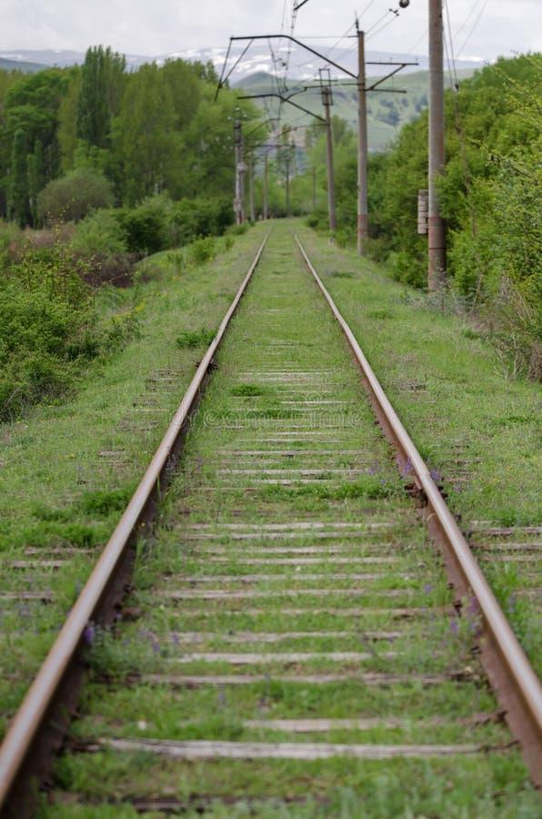 Railroad over green trees. Long way to horizon. Nobody.  stock photography