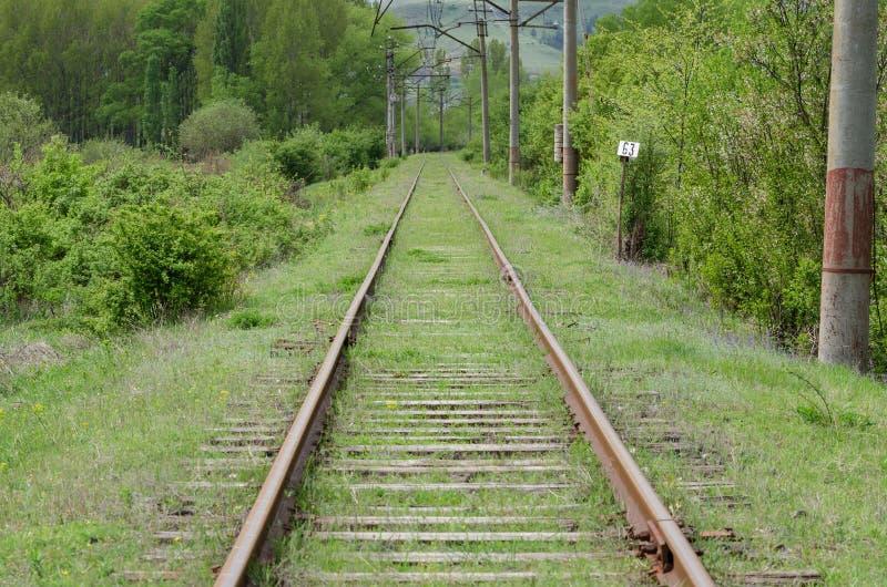 Railroad over green trees. Long way to horizon. Nobody.  stock image