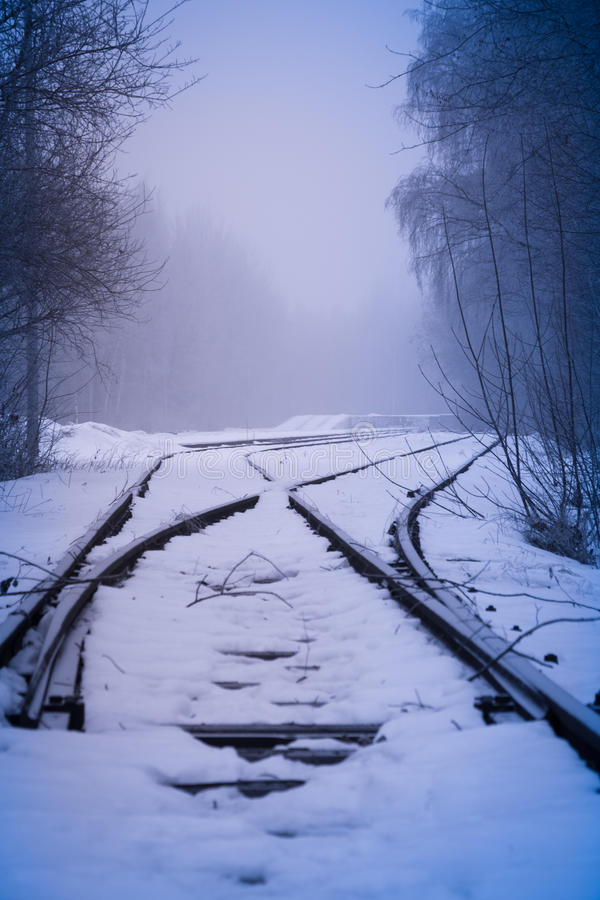Railroad rails in fog. In winter royalty free stock photo