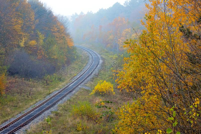 The railroad that runs through the autumn forest is a top view_ royalty free stock images