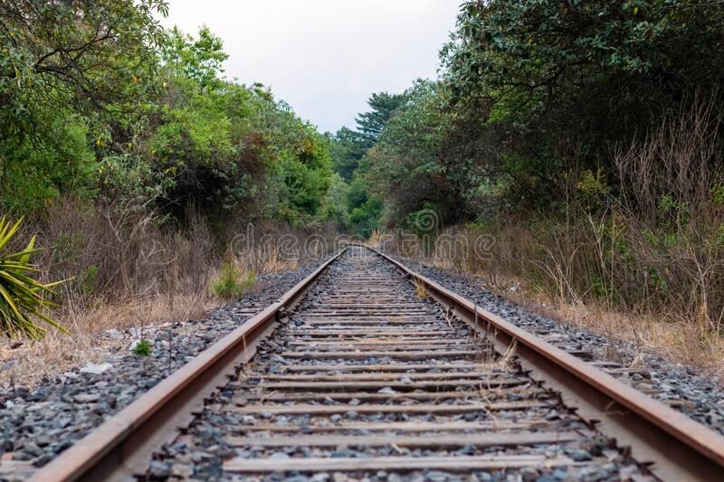 Railroad track Summer afternoon in the middle of the forest. Empty stock photo