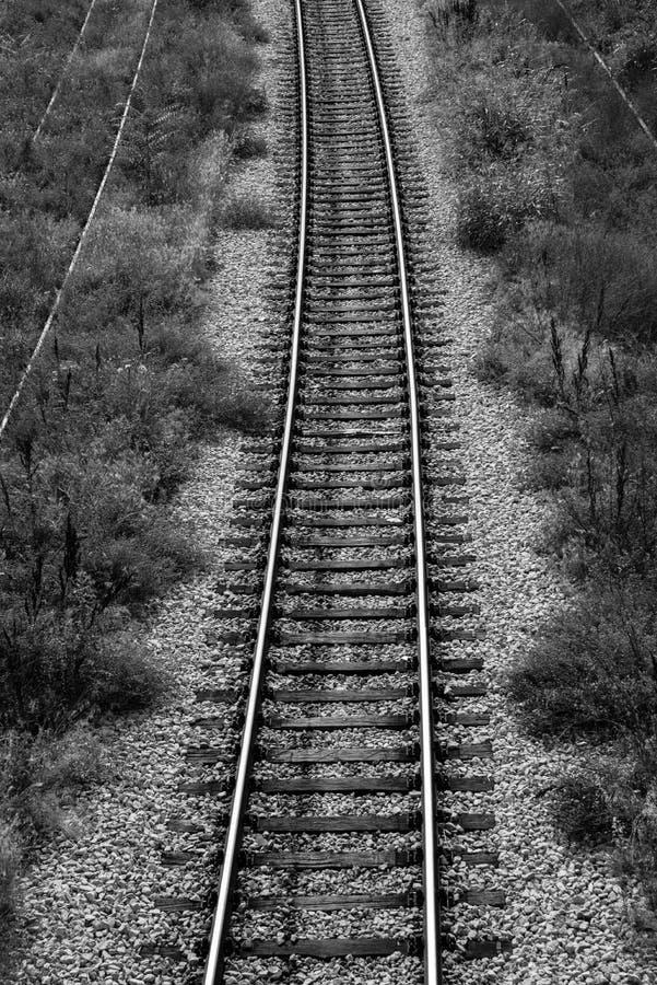Download RAILROAD TRACKS stock photo. Image of railroad, grassy - 31885118