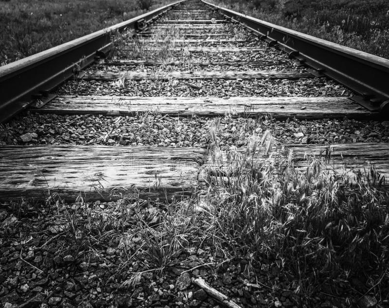 Railroad tracks leading lines stock photos