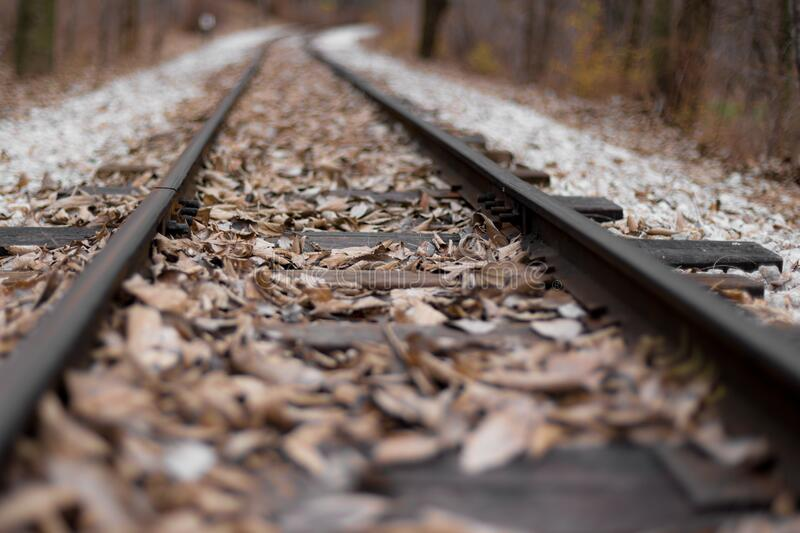 Railroad Tracks With Leaves Free Public Domain Cc0 Image