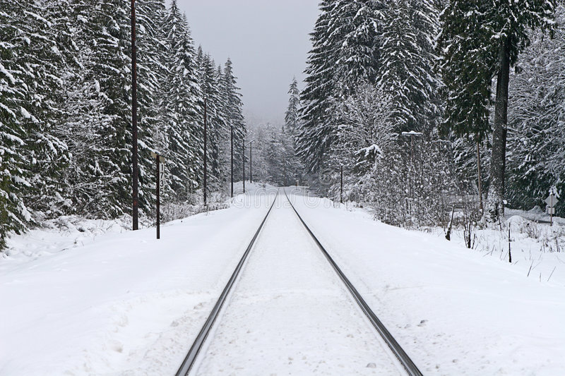 Railroad Tracks in Winter royalty free stock photography