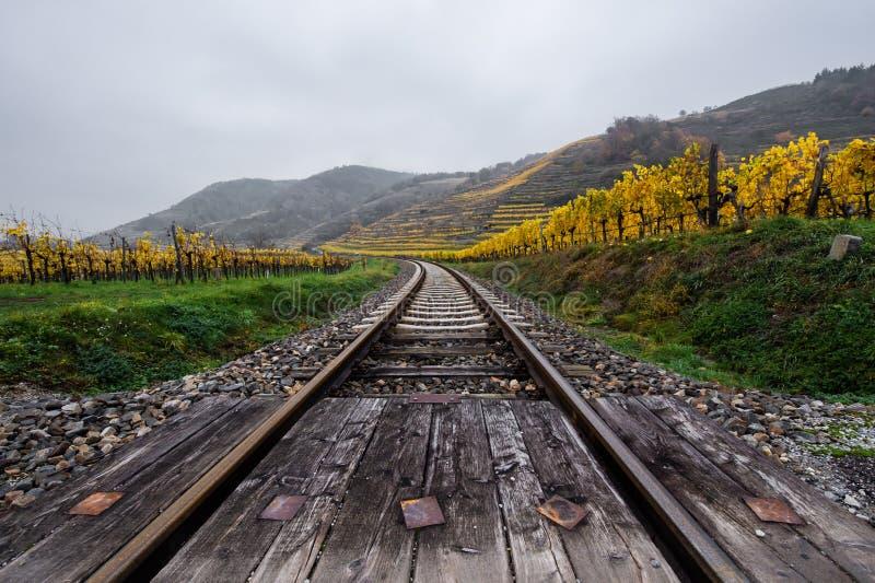 Rails through the autumnal vinyard landscape in Austria - Wachau. Krems stock photography
