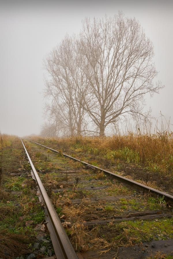 Rails and Fog. A rail line disappears into the fog royalty free stock photo