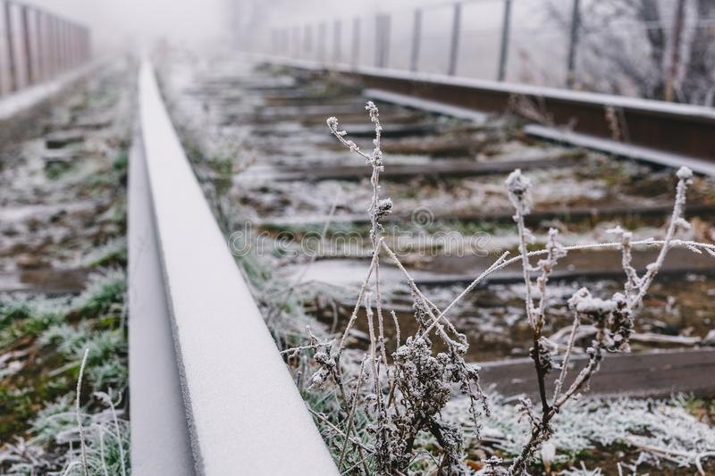 Rails in hoarfrost. Misty autumn morning.  stock photography