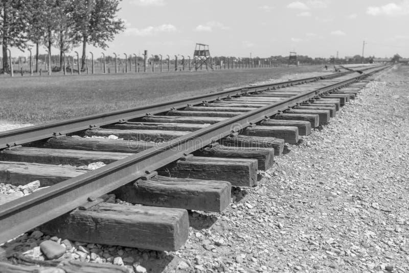 Rails le long du camp de concentration d'Auschwitz-Birkenau images libres de droits