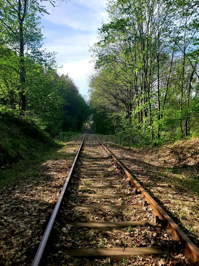 Rails. Nature nice  sunshine train royalty free stock photo