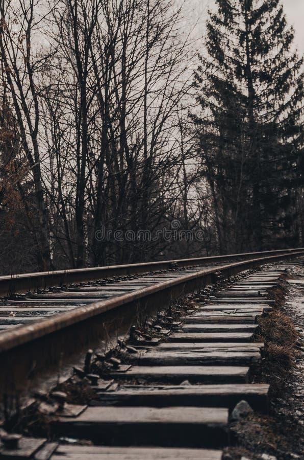 Rails par temps brumeux photos libres de droits