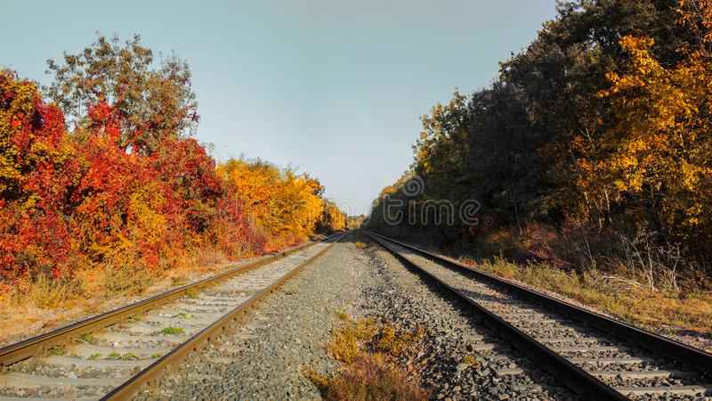 Rails shot close to a sunny autumn day stock image