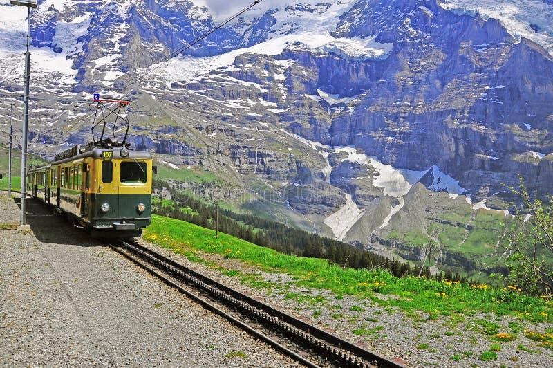 Railway узкого датчика. Швейцария. стоковое фото