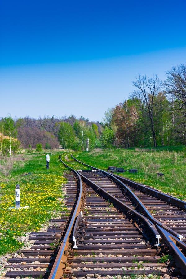 Railroad tracks through field in Scotland - Stock Photo