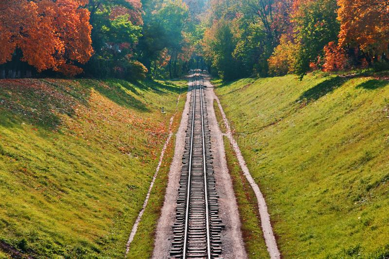 Railway in autumn forest stock images