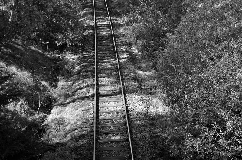 Download Railway czech B&W stock photo. Image of black, forest - 26805374