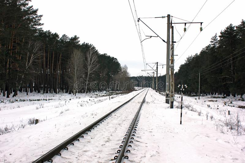 Railway in the forest. Winter time royalty free stock photos