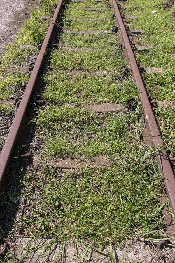 A railway line. A close view of a railway line where the grass has grown over the middle and sides of the railway line stock image