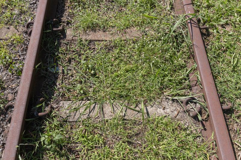 A railway line. A close view of a railway line where the grass has grown over the middle and sides of the railway line royalty free stock image