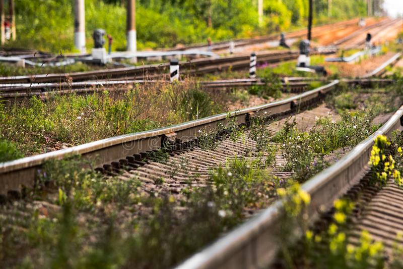 Railway rails in the grass leaving into the distance, soft focus. Railway rails in the grass leaving into the distance royalty free stock image