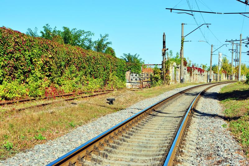 Railway tracks along wall of wild grapes and pillars, sunny summer. Day royalty free stock images