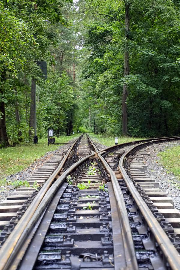 Railway tracks in the forest. Road. Beautiful trees, rails and sleepers. Green leaves stock photography