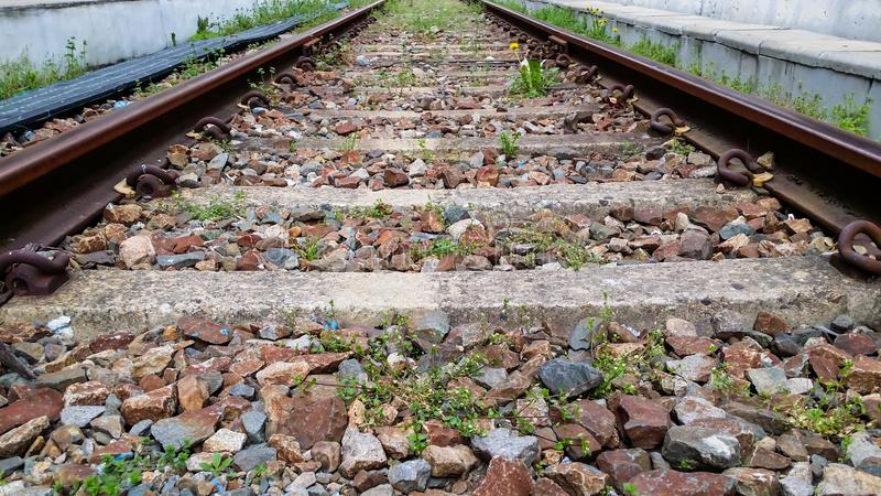 .Railway tracks have stones and yellow flowers in the middle royalty free stock photo