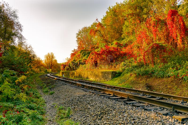 Railway or tramway track in a beautiful autumn stock photo