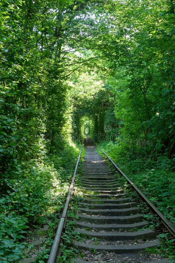 Railway between the trees that create a tunnel of green leaves. Klevan, Ukraine, romantic and mysterious `Tunnel of love`. Travel to Ukraine royalty free stock images
