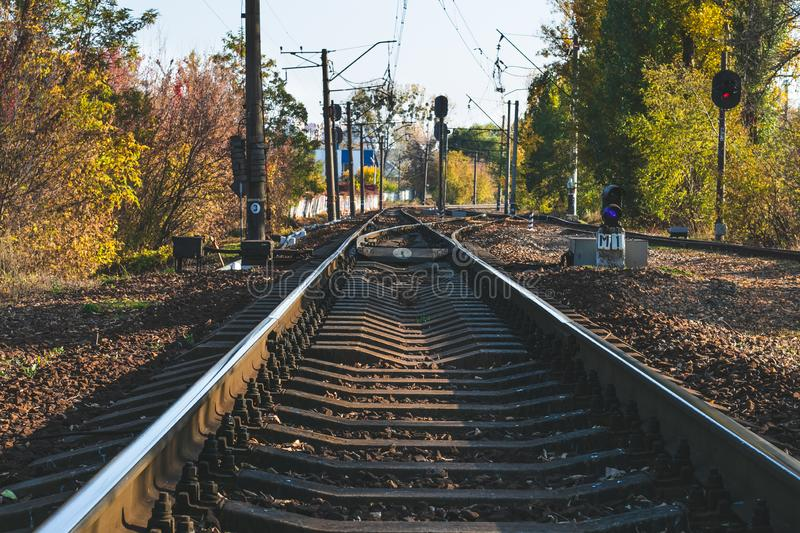 Railways in the forest. Railroad with rails in autumn. Perspective, urban travel. royalty free stock photo