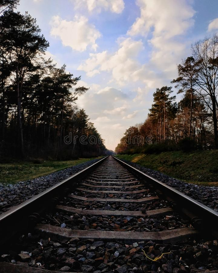 Railways. Perspective bluesky trees forest details stock photo
