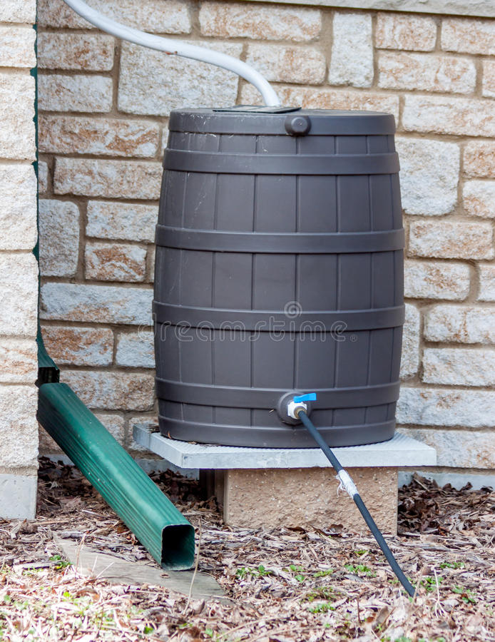 Rain Barrel. A rain barrel set up to catch rain royalty free stock images